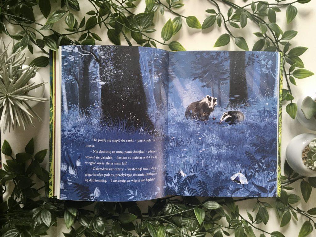 Książka o borsukach dla dzieci Zabawkator